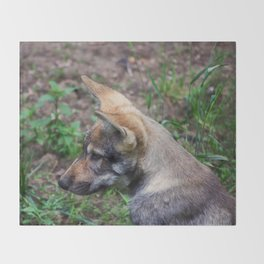 Canis Lupus Lupus II Throw Blanket