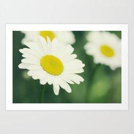 Fleurs sur le pré Art Print