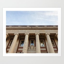 Dinand Library Art Print