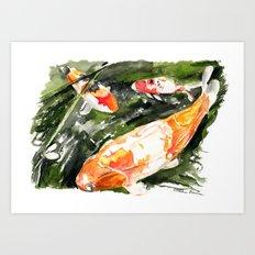 Koi carp 4 Art Print