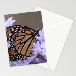 Monarch Beauty Stationery Cards