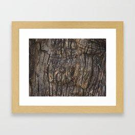 Bark VII Framed Art Print