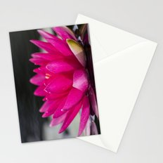 Flower Series 5 Stationery Cards
