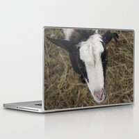 goat Laptop & iPad Skins featuring Goat by JCalls Photography