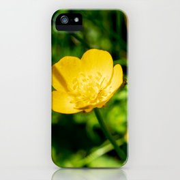 Yellow buttercup flower in summer iPhone Case
