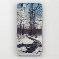 Snow River iPhone & iPod Skin