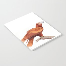 Wedged-tailed Eagle Notebook