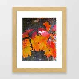 glowing autumn Framed Art Print