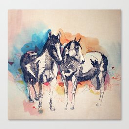 Two Horses (Standing) Canvas Print