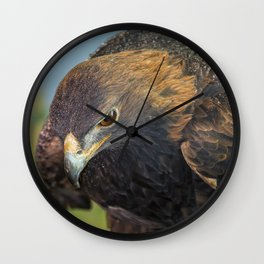 Golden Eagle Wall Clock