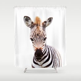 Baby Zebra, Baby Animals Art Prints by Synplus Shower Curtain