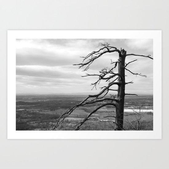 Good ol Nature Art Print