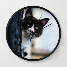 Curious Black and White Cat Wall Clock