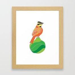 Comemaiz on a pear Framed Art Print