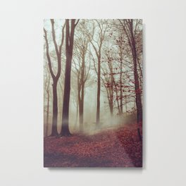 Late fall Forest in Fog Metal Print