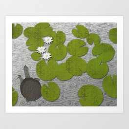 Water lilies with Florida Soft-shell Turtle Art Print