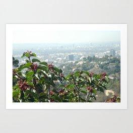 Hollywood Dreams Art Print