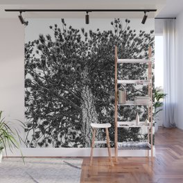 Tree Top // Snowy Winter Alpine Branches Trunk Nature Landscape Photography Black and White Decor Wall Mural
