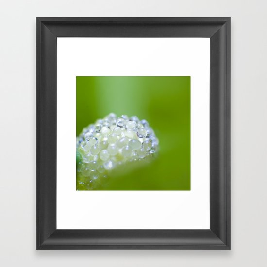 SERIES »MICROPEARLS« II Framed Art Print