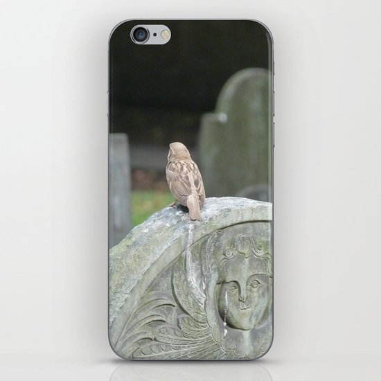 Sparrow in King's Chapel Burying Ground Boston iPhone & iPod Skin
