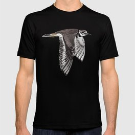 Vociferus peruvianus - Charadrius - Killdeer - Chorlo gritón T-shirt