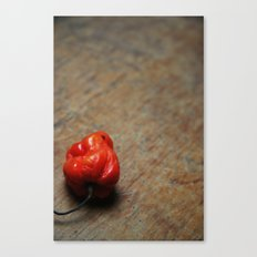 Habanero on the side Canvas Print