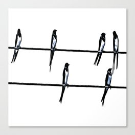 Birds On Wires Planning The ETD Canvas Print