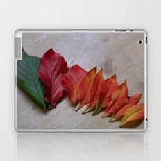 Color Transition Laptop & iPad Skin