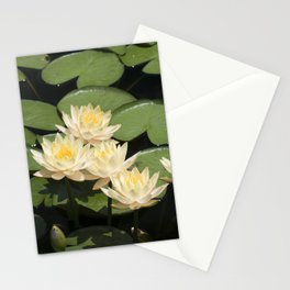 Longwood Gardens - Spring Series 279 Stationery Cards