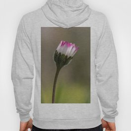 Close daisy Hoody