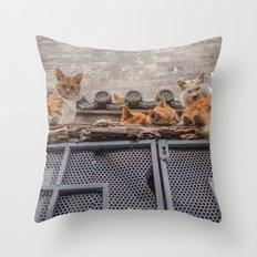 A Bunch of Cats Throw Pillow