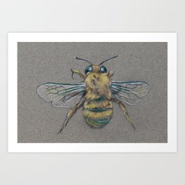 Bee for Lindsay Art Print