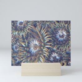 Sea Anemones Mini Art Print