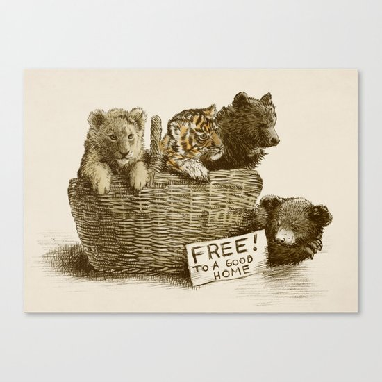 Lions and Tigers and Bears Canvas Print