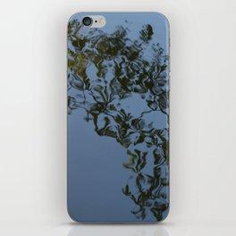 Reflection - Frederiksberg Haven, Denmark iPhone Skin