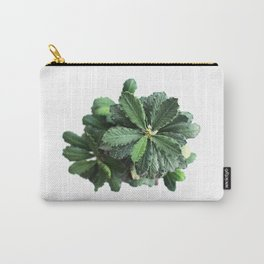 The green leaf of the Euphorbia Carry-All Pouch