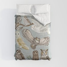 Owls Illustrated Chart Comforters