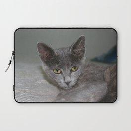 Beautiful Portrait of A Grey Russian Cross Tabby Cat  Laptop Sleeve