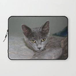 Beautiful Portrait of A Grey Russian Cross Tabby Cat  Laptop Sleeve