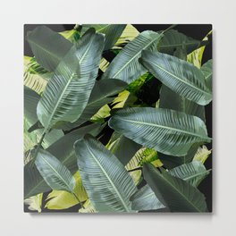 Topical palm leaf, banana leaf, black background, greens, Beach Hawaii decor Metal Print
