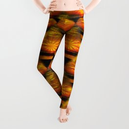 Sunset at the Lake Leggings