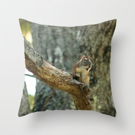 Brown Squirrel Throw Pillow