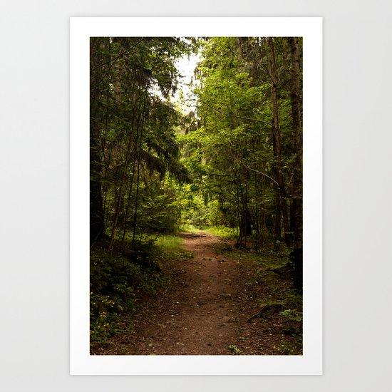 Norwegian woods Art Print
