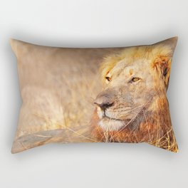 Lion in the warm sunlight of South Africa Rectangular Pillow