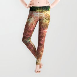 Prayers of Mandelbrot Leggings