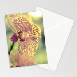 Orchid Ⅲ Stationery Cards
