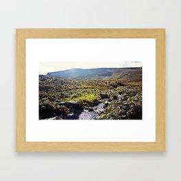 Glendalough Stream Framed Art Print