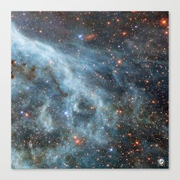 Large Magellanic Cloud Canvas Print