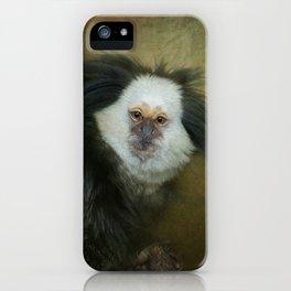 Geoffroy's Marmoset iPhone Case
