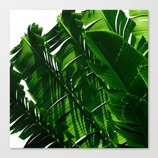 Green Me Up Canvas Print